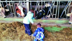 Bauernhof Kinder